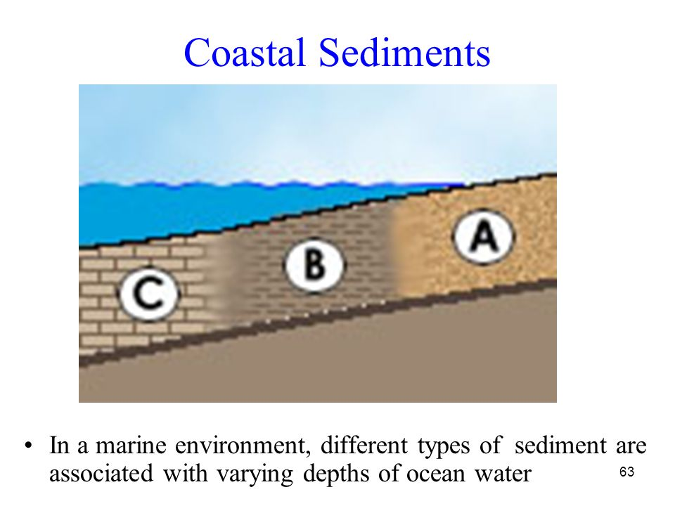63 Coastal Sediments In a marine environment, different types of sediment are associated with varying depths of ocean water