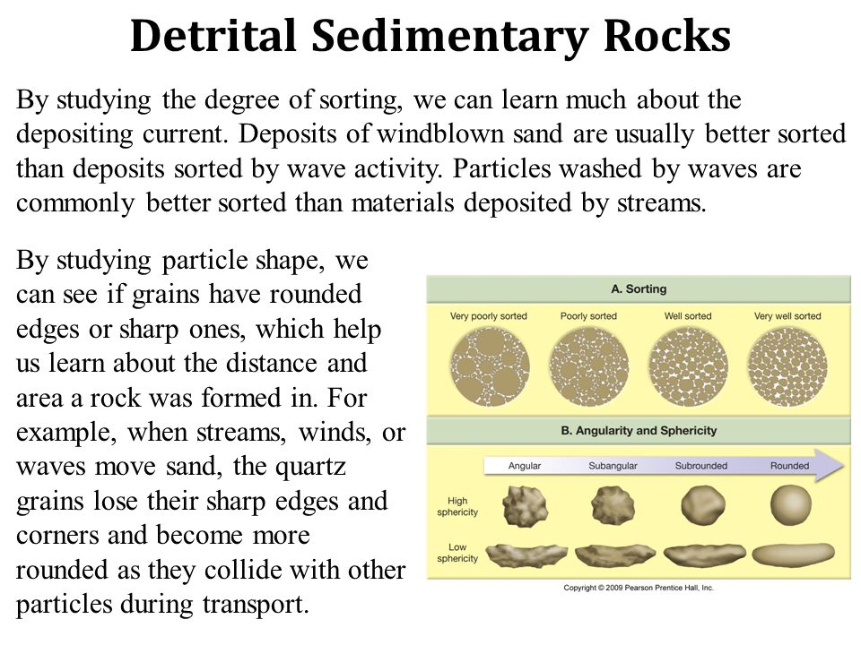Detrital Sedimentary Rocks By studying the degree of sorting, we can learn much about the depositing current.