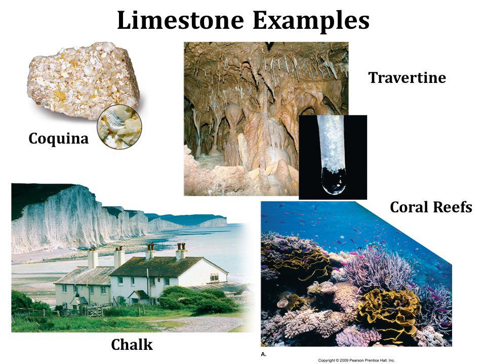 Limestone Examples Travertine Coquina Chalk Coral Reefs