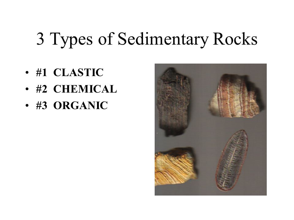 3 Types of Sedimentary Rocks #1 CLASTIC #2 CHEMICAL #3 ORGANIC