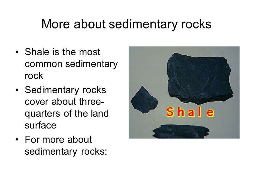 More about sedimentary rocks Shale is the most common sedimentary rock Sedimentary rocks cover about three- quarters of the land surface For more about sedimentary rocks: