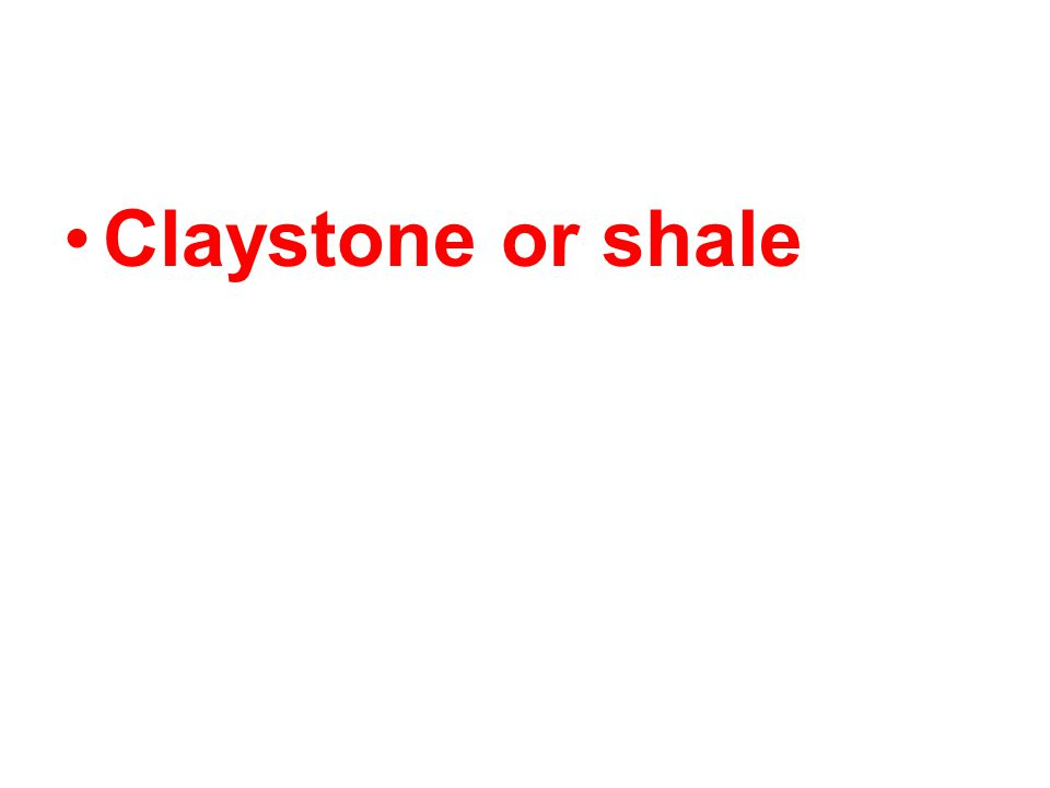 A Clastic sedimentary rock composed mostly of clay is called ________.