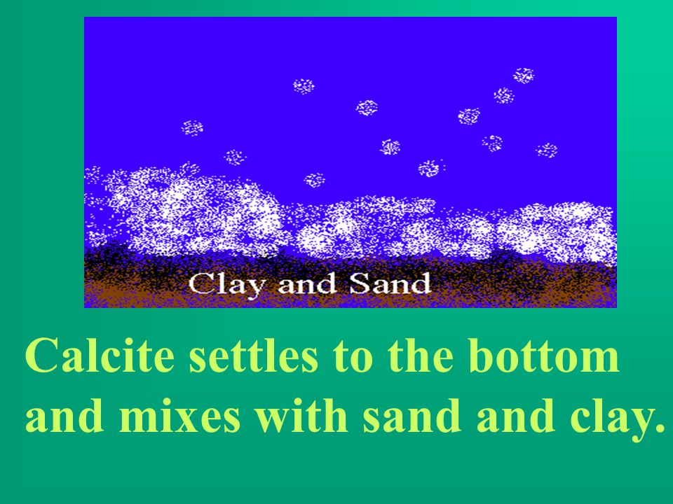 Calcite settles to the bottom and mixes with sand and clay.