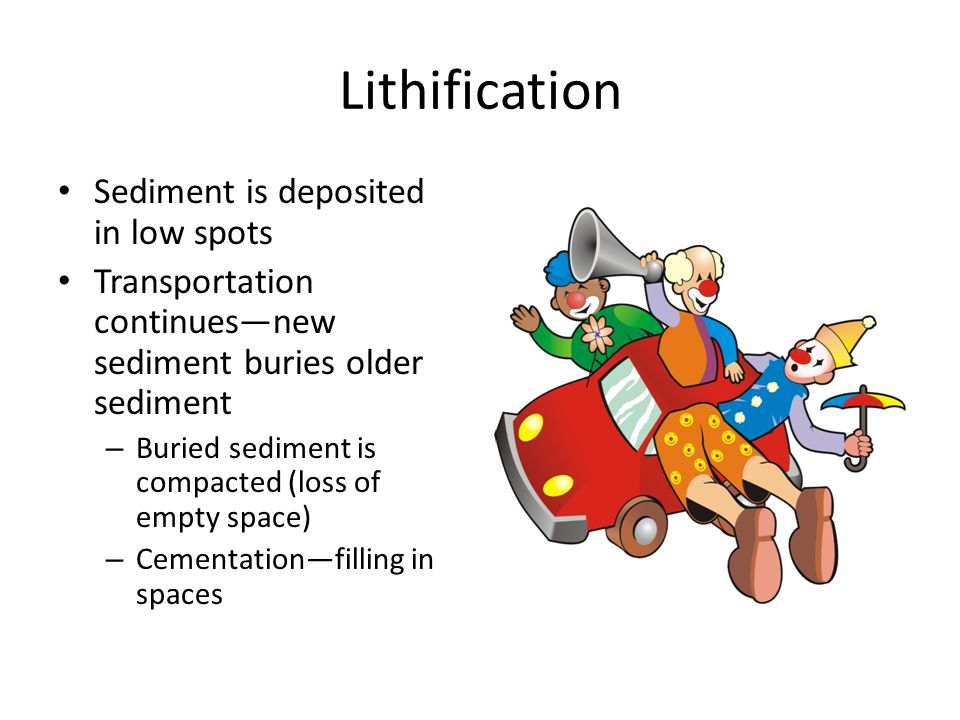 Lithification Sediment is deposited in low spots Transportation continues—new sediment buries older sediment – Buried sediment is compacted (loss of e
