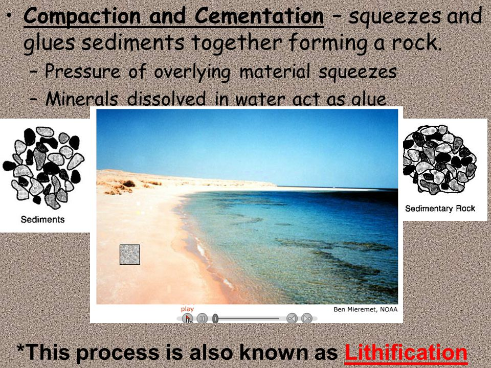 Compaction and Cementation – squeezes and glues sediments together forming a rock. –Pressure of overlying material squeezes –Minerals dissolved in wat