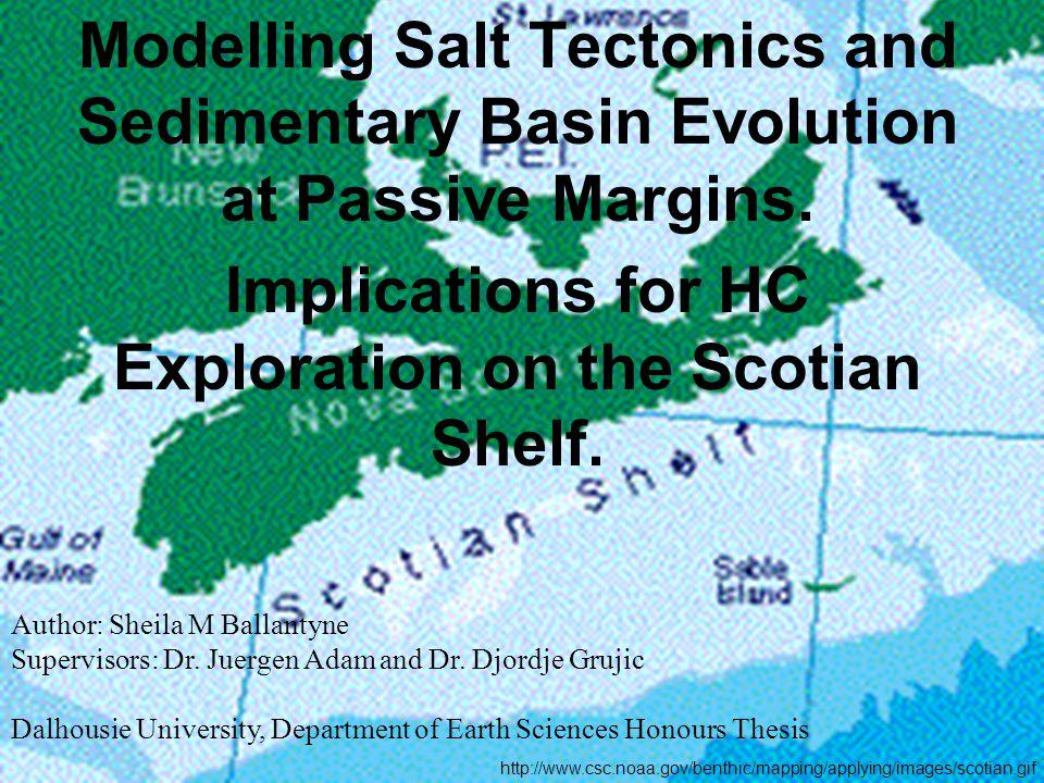 Modelling Salt Tectonics and Sedimentary Basin Evolution at Passive Margins.
