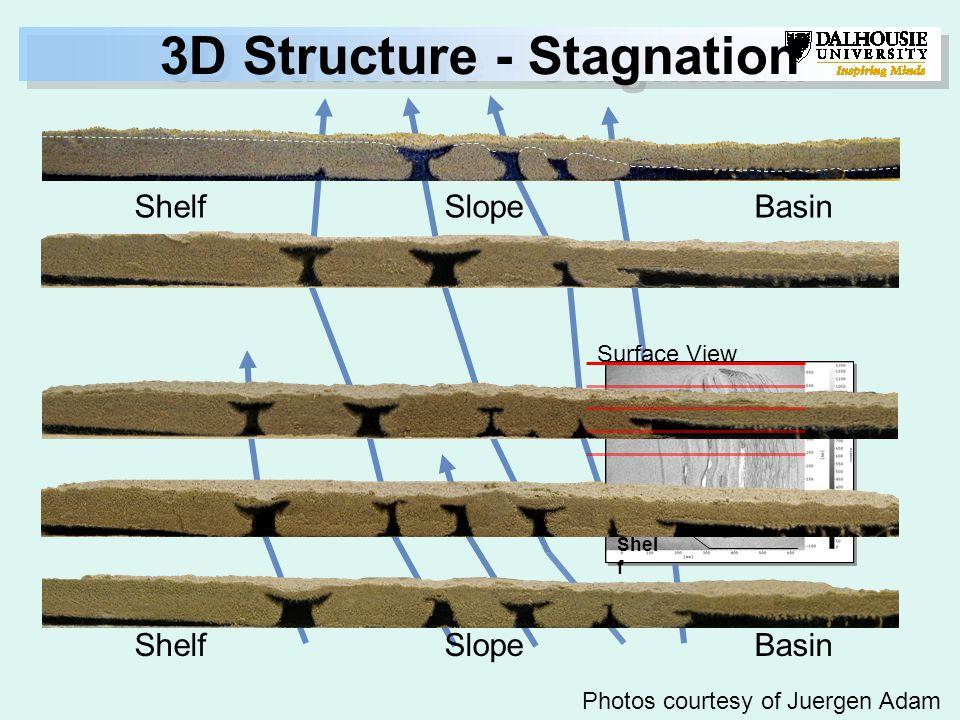 Surface View Shel f 3D Structure - Stagnation ShelfSlopeBasin ShelfSlopeBasin Photos courtesy of Juergen Adam