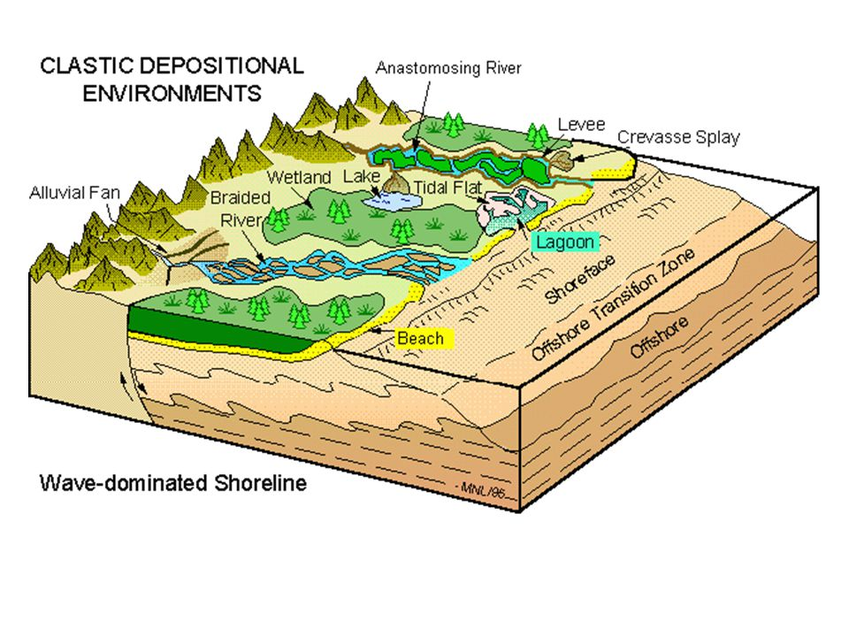 basic types of sedimentary environments