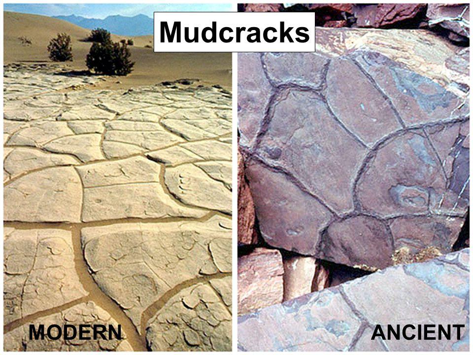 MODERNANCIENT Mudcracks