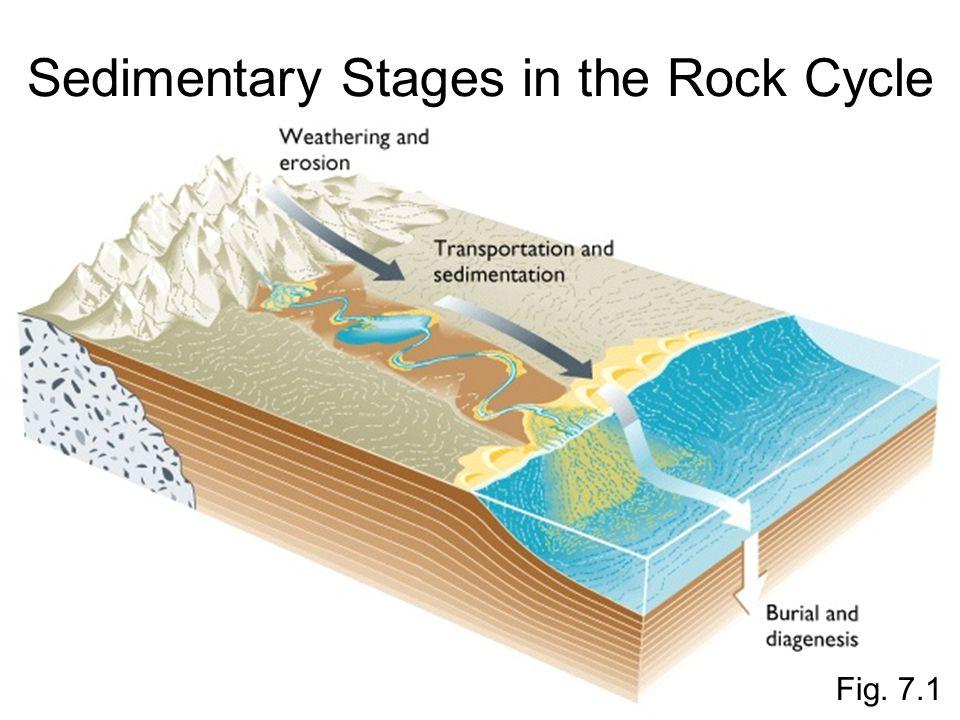 Fig. 7.14 Relative Abundance of Sedimentary Rock Types Relative Abundance of Sedimentary Rock Types