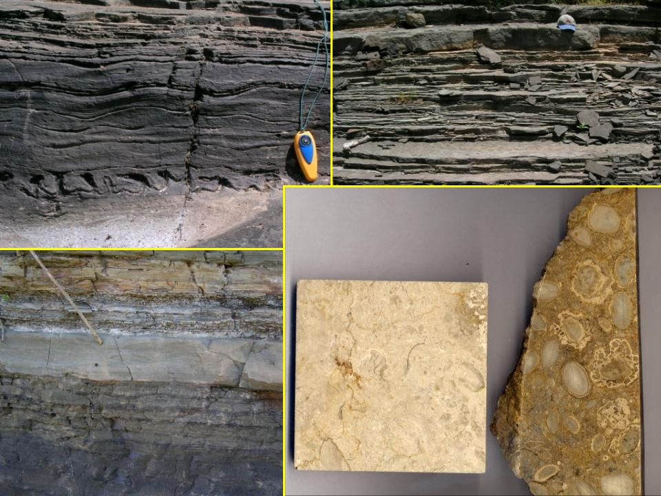 Metamorphic Rocks Metamorphic rocks are formed when the mineralogy, and/or texture of previously-existing rocks are changed.