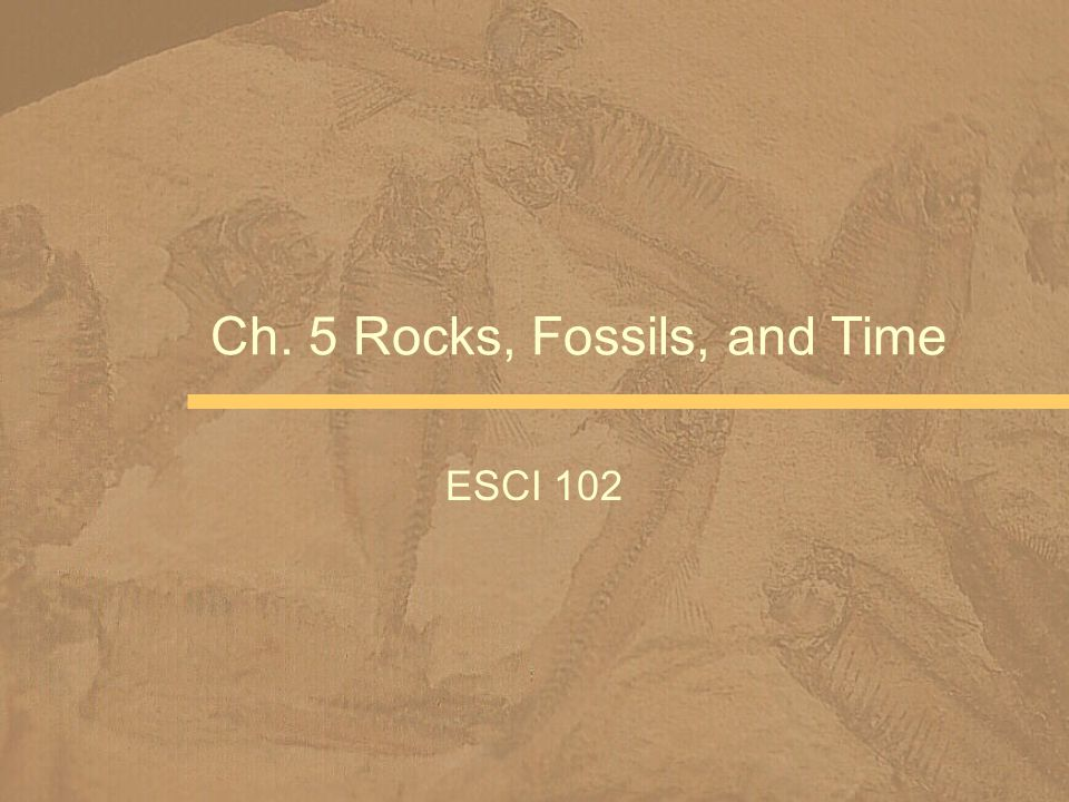 Ch. 5 Rocks, Fossils, and Time ESCI 102