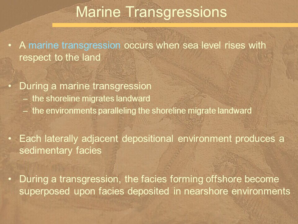 A marine transgression occurs when sea level rises with respect to the land During a marine transgression –the shoreline migrates landward –the enviro