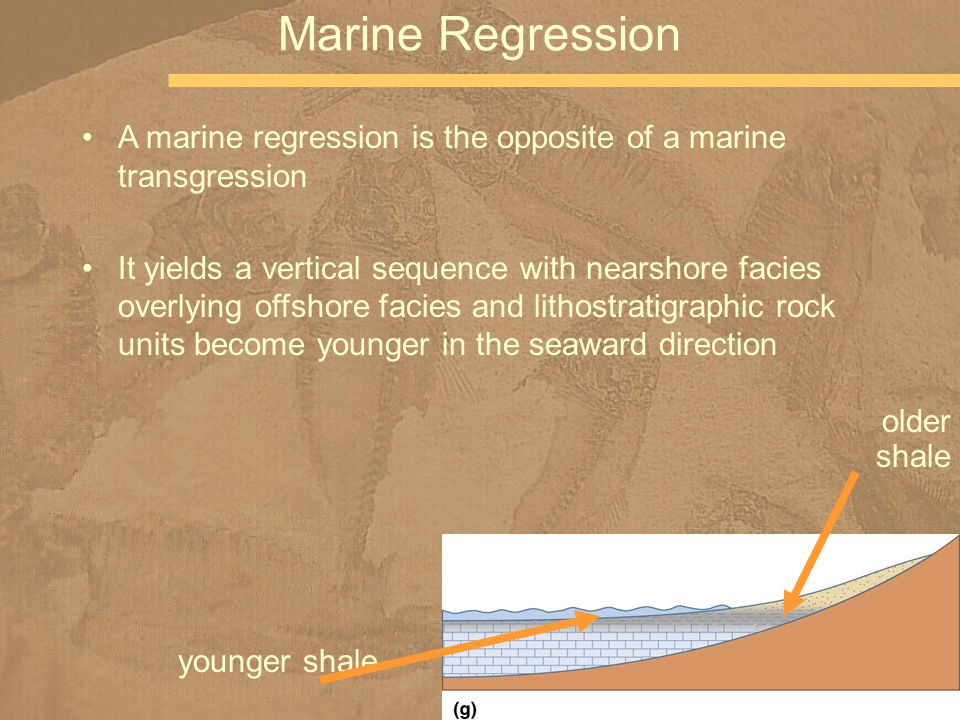 Marine Regression A marine regression is the opposite of a marine transgression It yields a vertical sequence with nearshore facies overlying offshore