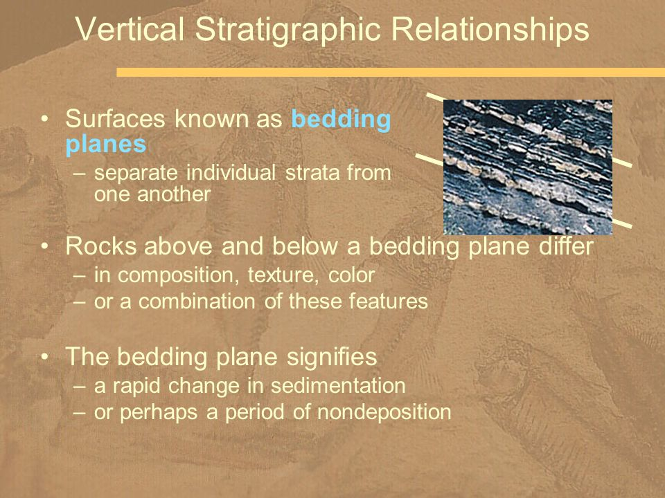 Nicolas Steno realized that he could determine the relative ages of horizontal (undeformed) strata by their position in a sequence In deformed strata, the task is more difficult –sedimentary structures, such as cross-bedding, and fossils –allow geologists to resolve these kinds of problems more later in term Superposition