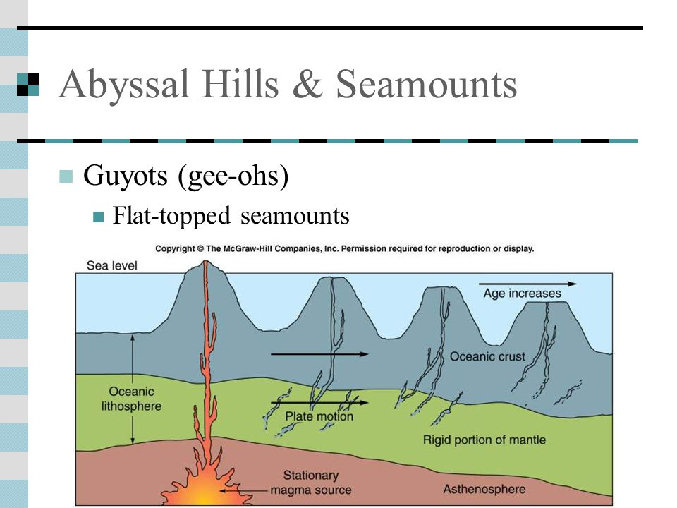 Abyssal Hills & Seamounts Guyots (gee-ohs) Flat-topped seamounts