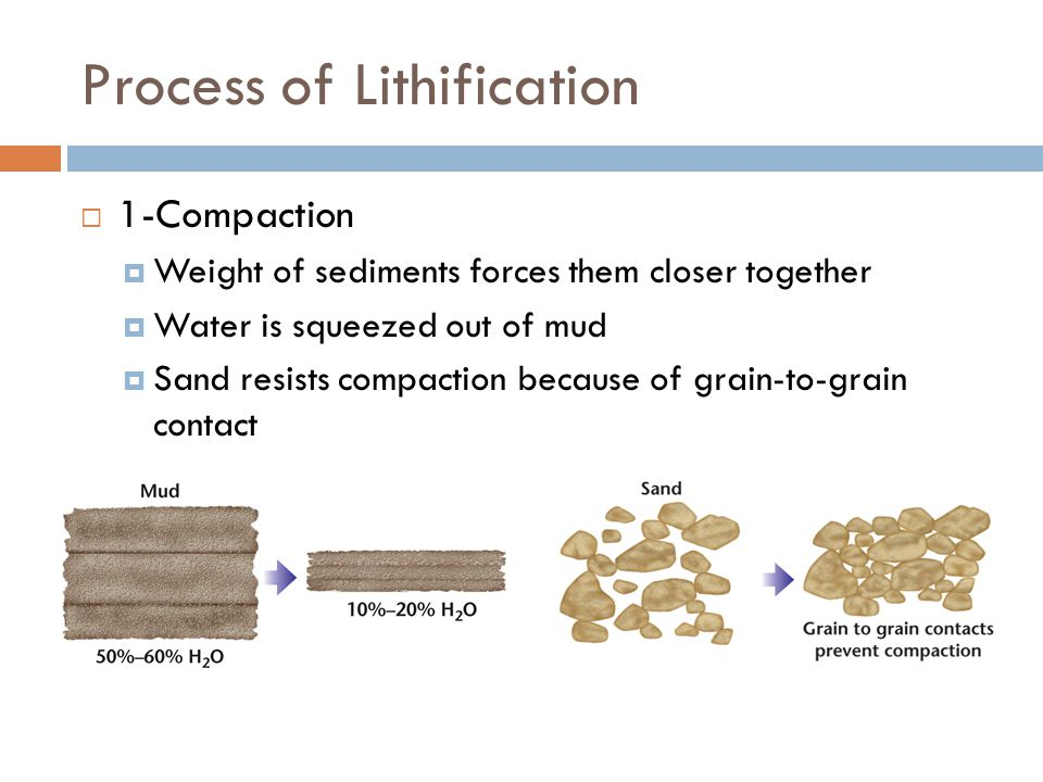 Process of Lithification  1-Compaction  Weight of sediments forces them closer together  Water is squeezed out of mud  Sand resists compaction because of grain-to-grain contact