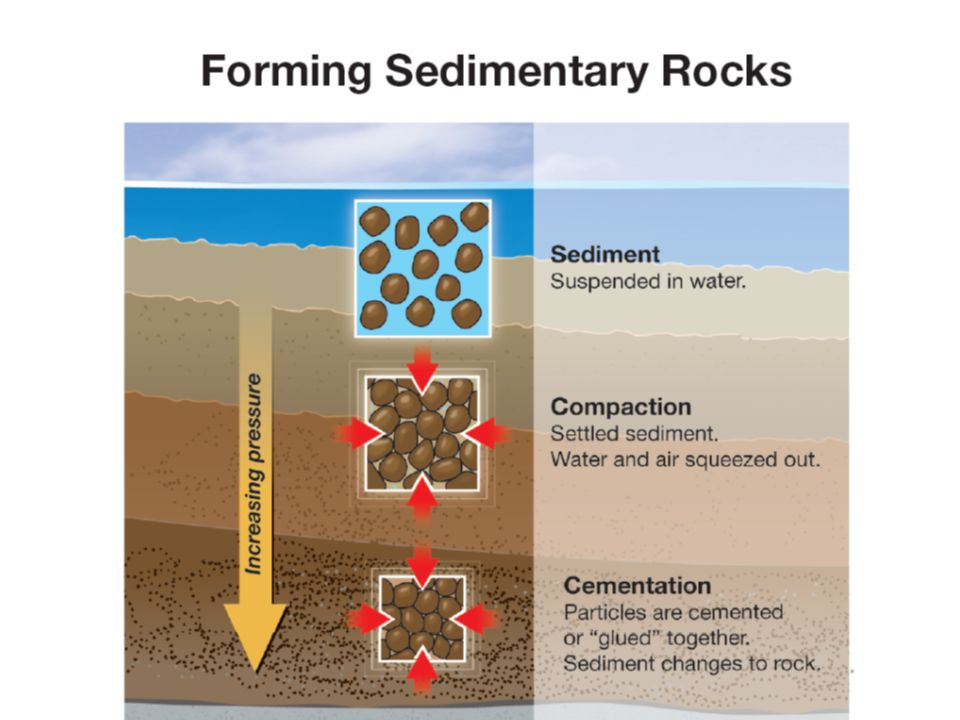 13.3 Sedimentary Rocks  Sedimentary rocks are identified by the size of the particles that form them.