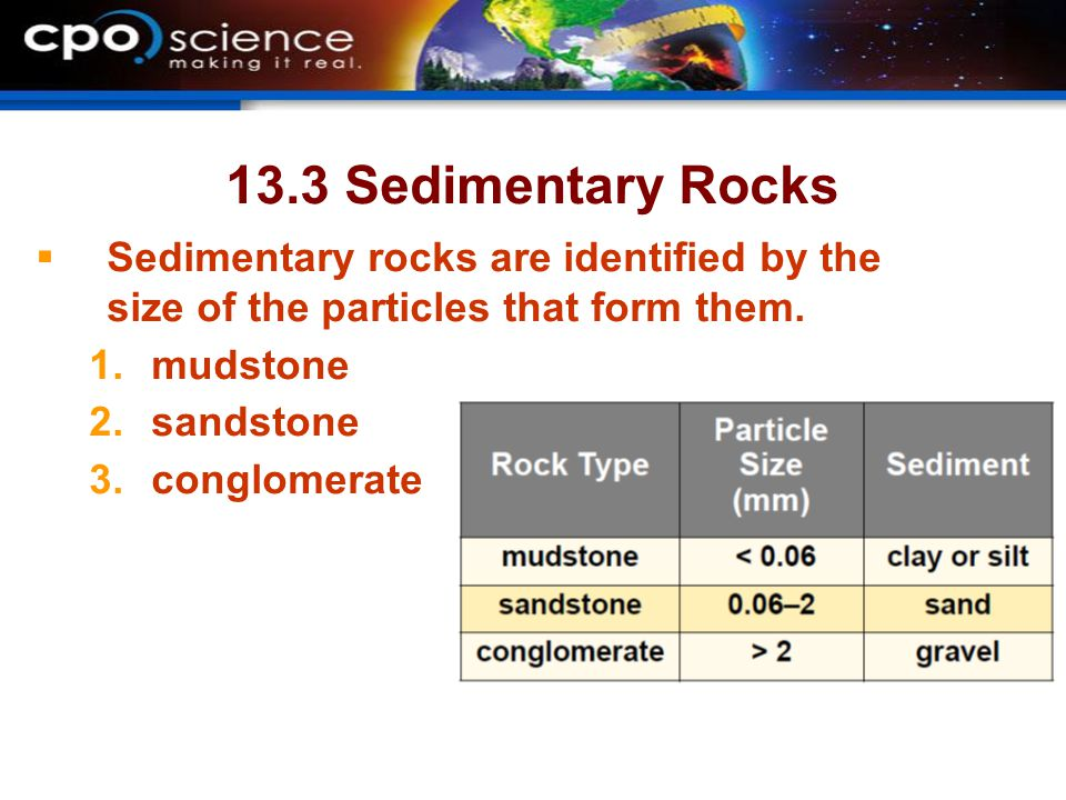 23.3 Sedimentary Rocks  Most fossils are found in sedimentary rock layers.
