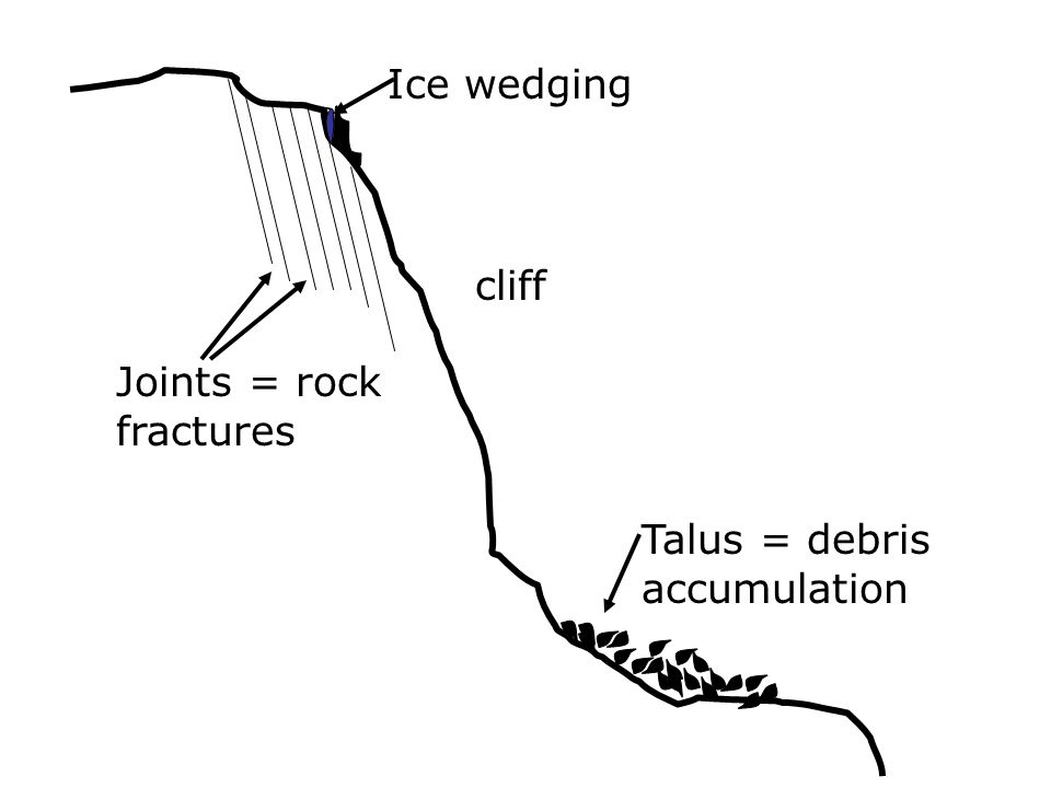 Exfoliation Dome: Chief