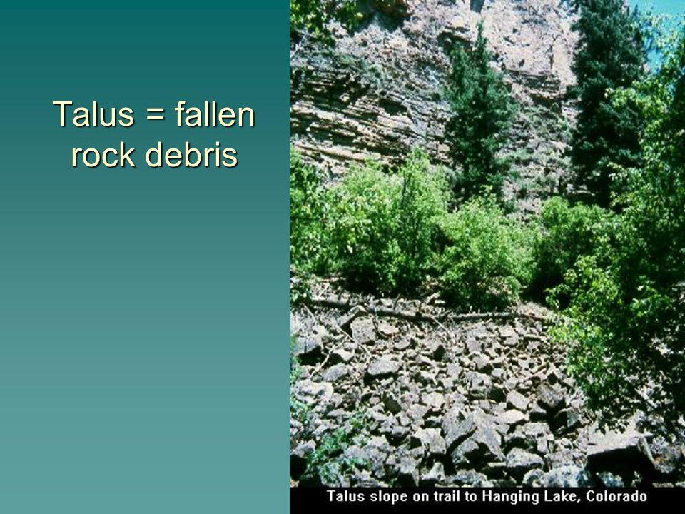 Talus = fallen rock debris