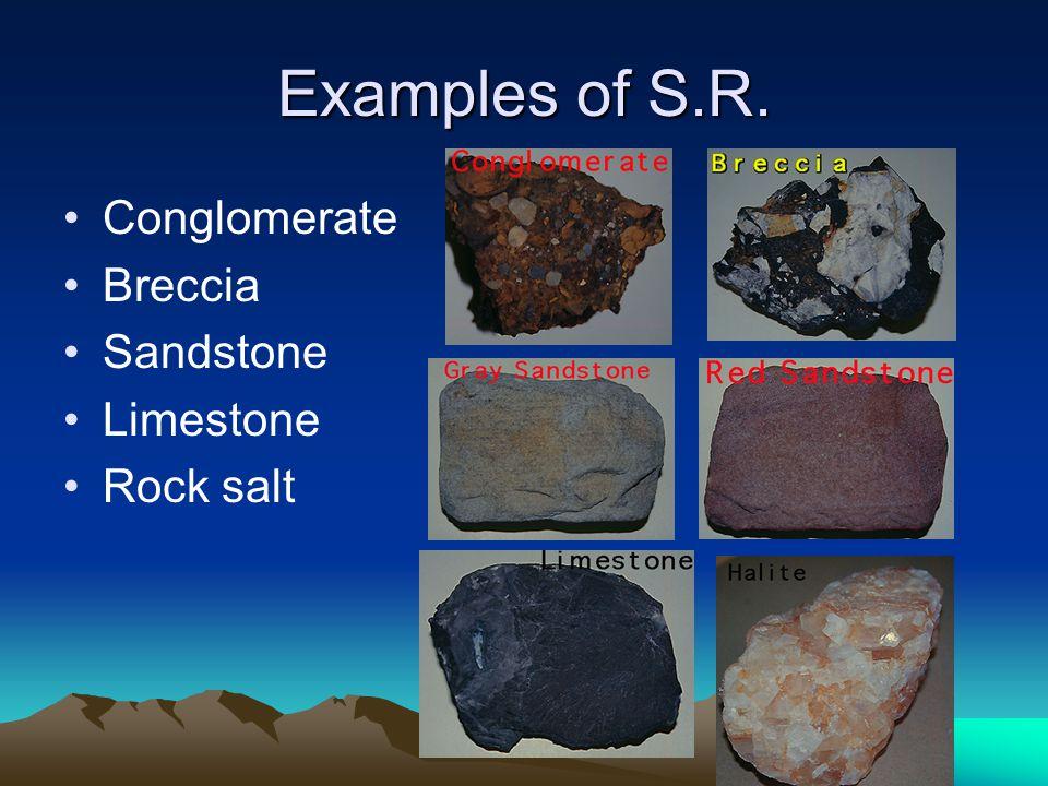 Examples of S.R. Conglomerate Breccia Sandstone Limestone Rock salt