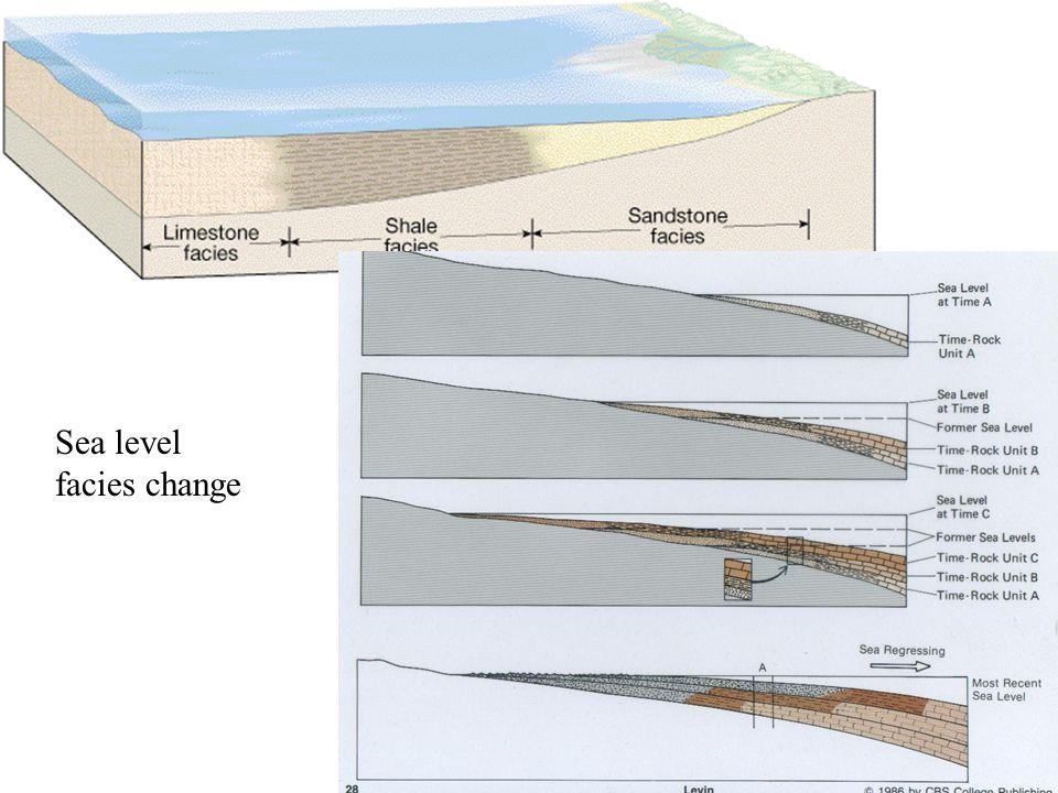 Sea Level Facies Change Sea level facies change