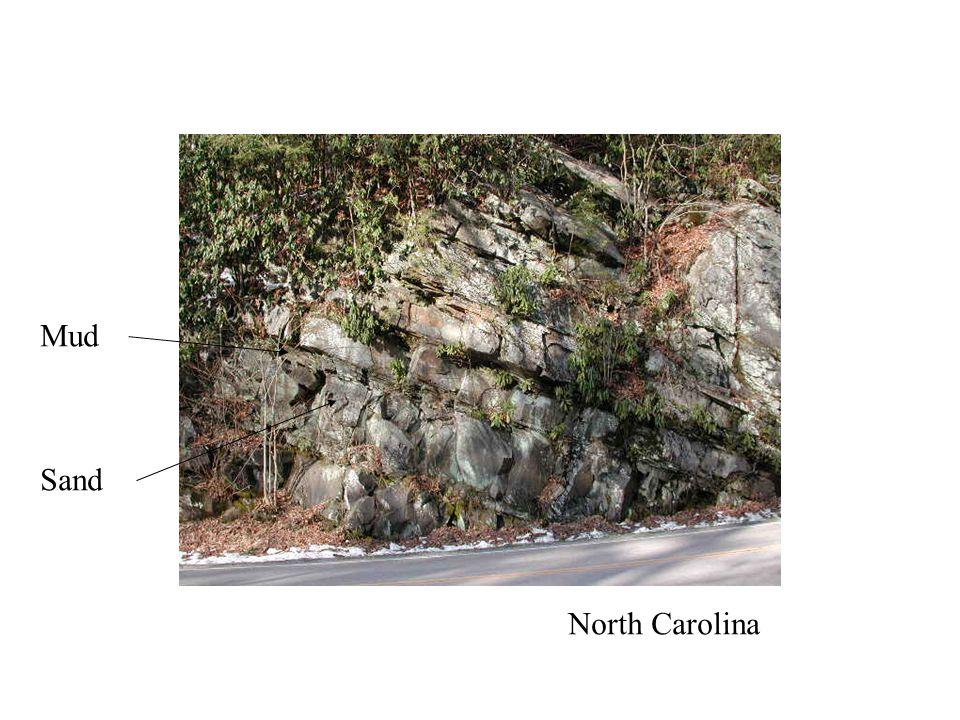 Sea Level Photo NC Sand Mud North Carolina