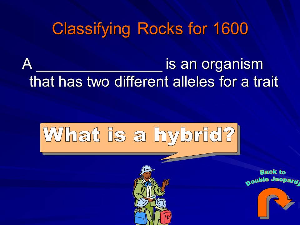 Classifying Rocks for 1600 A _______________ is an organism that has two different alleles for a trait A _______________ is an organism that has two different alleles for a trait