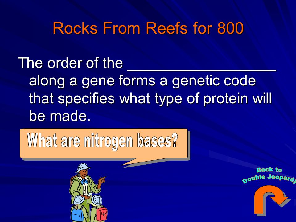 Rocks From Reefs for 800 The order of the __________________ along a gene forms a genetic code that specifies what type of protein will be made.