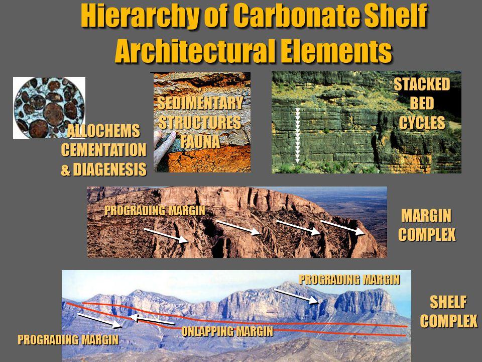 """Sequence Stratigraphy – Basics"" C. G. St. C. Kendall SHELFMARGINCOMPLEX SHELFCOMPLEX BEDS BED,LITHOLOGY Hierarchy of Carbonate Shelf Architectural El"