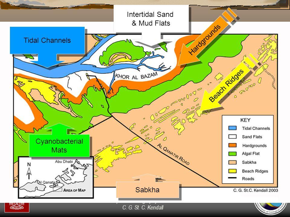"""Sequence Stratigraphy – Basics"" C. G. St. C. Kendall Tidal Channels Intertidal Sand & Mud Flats Intertidal Sand & Mud Flats Hardgrounds Cyanobacteria"