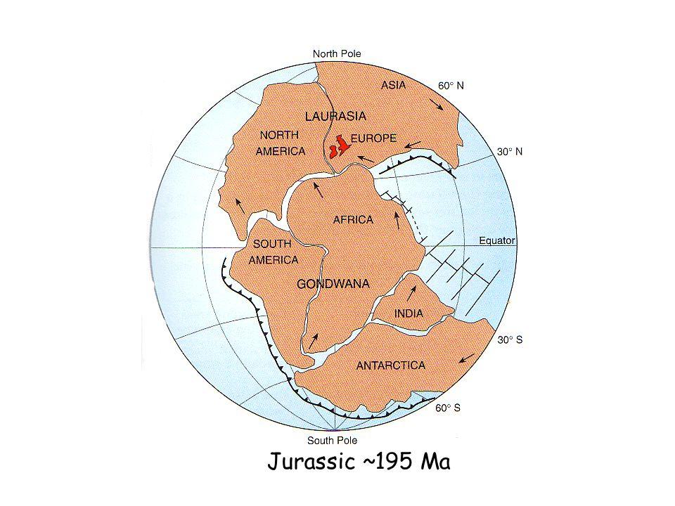 Jurassic ~195 Ma
