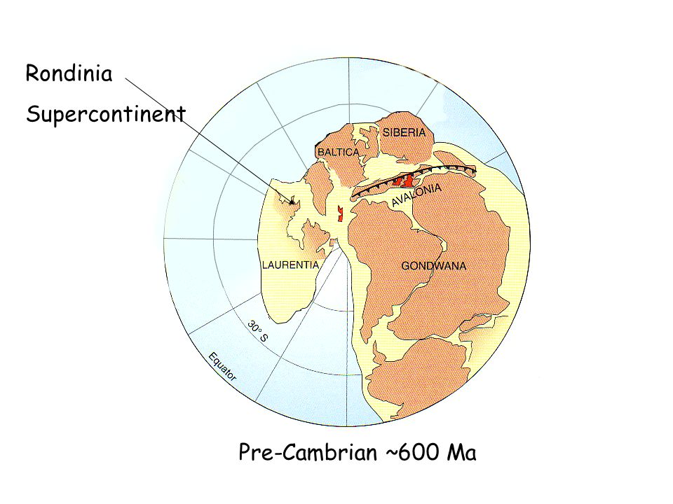Pre-Cambrian ~600 Ma Rondinia Supercontinent