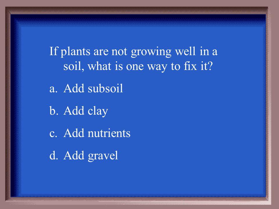b. subsoil