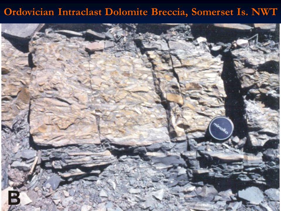 Ordovician Intraclast Dolomite Breccia, Somerset Is. NWT
