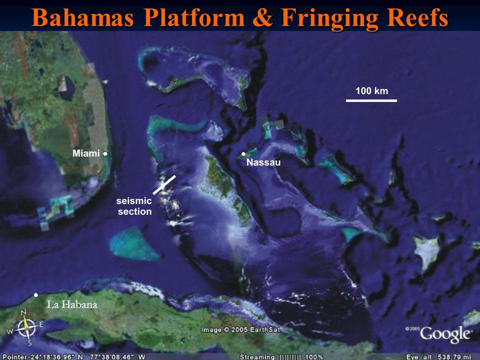 Bahamas Platform & Fringing Reefs La Habana.