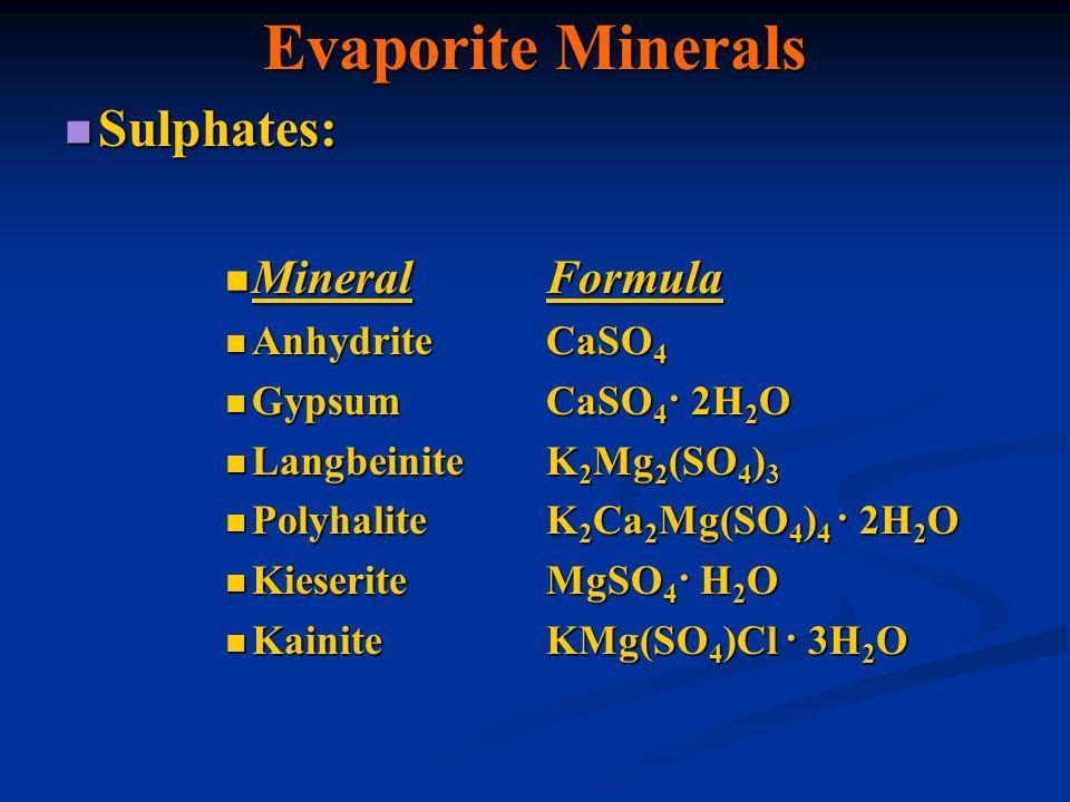 Evaporite Minerals Sulphates: Sulphates: MineralFormula MineralFormula AnhydriteCaSO 4 AnhydriteCaSO 4 GypsumCaSO 4 · 2H 2 O GypsumCaSO 4 · 2H 2 O Lan