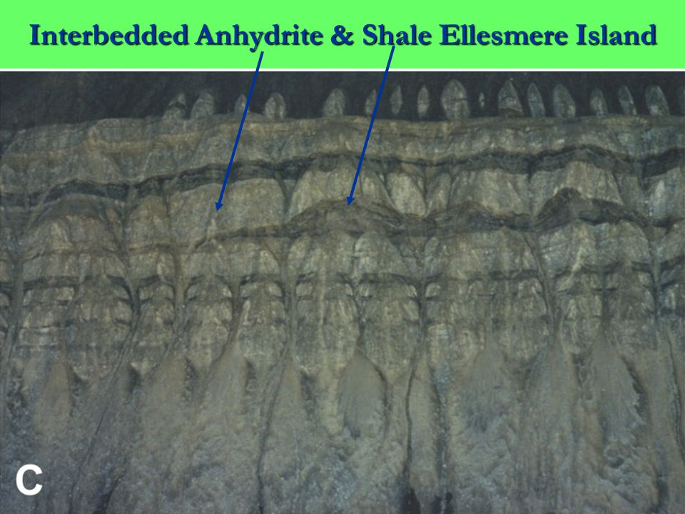 Interbedded Anhydrite & Shale Ellesmere Island