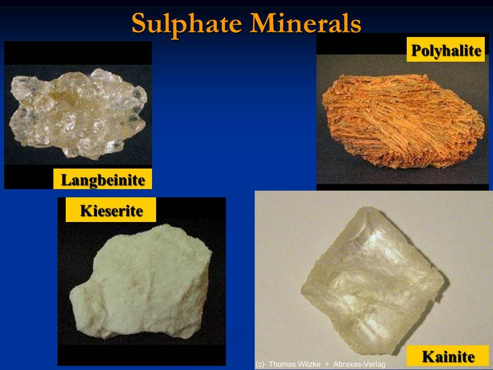 Sulphate Minerals Kainite Kieserite Langbeinite Polyhalite