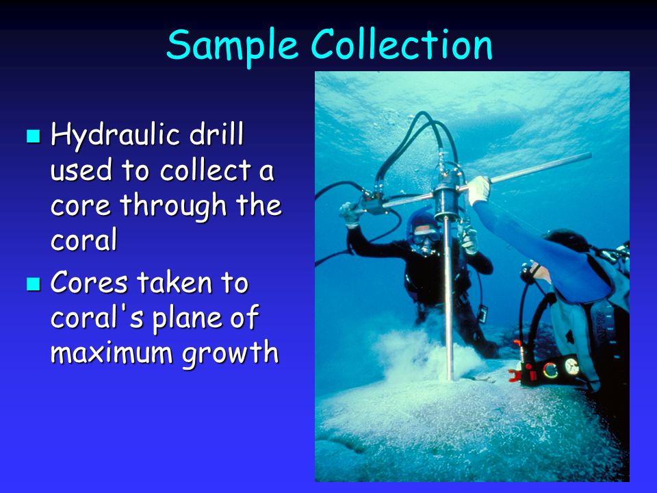 Sample Collection Hydraulic drill used to collect a core through the coral Hydraulic drill used to collect a core through the coral Cores taken to coral s plane of maximum growth Cores taken to coral s plane of maximum growth