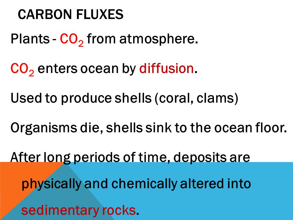 CARBON FLUXES Plants - CO 2 from atmosphere. CO 2 enters ocean by diffusion.