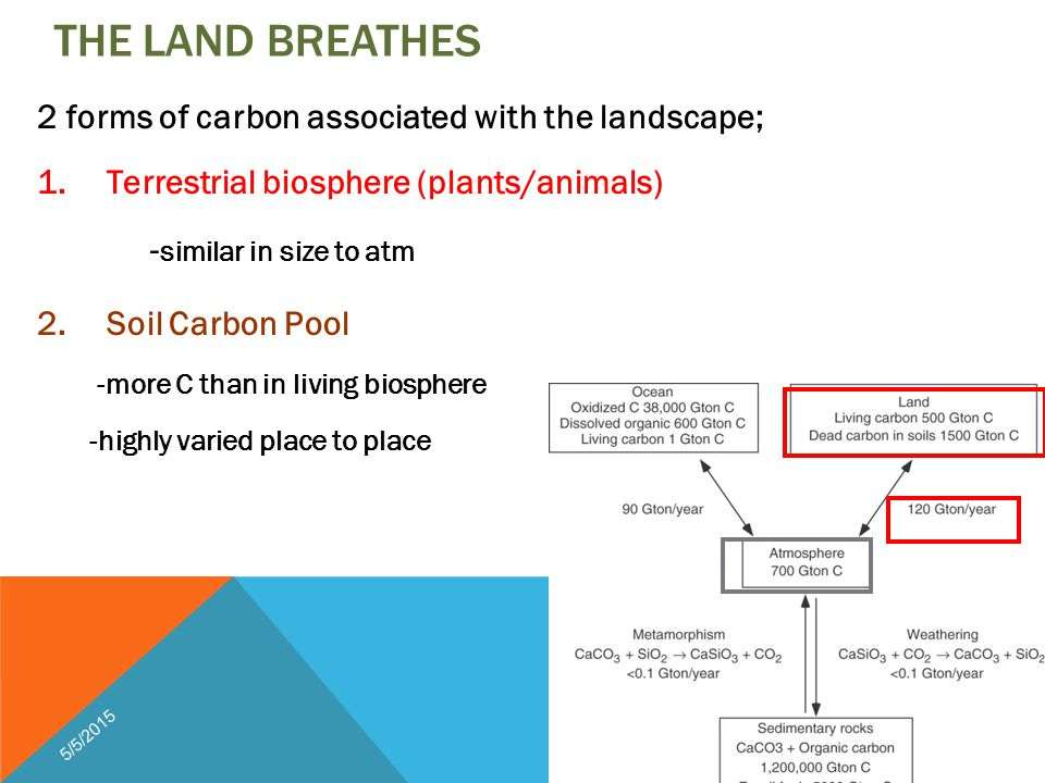 THE LAND BREATHES 2 forms of carbon associated with the landscape; 1.Terrestrial biosphere (plants/animals) - similar in size to atm 2.Soil Carbon Pool -more C than in living biosphere -highly varied place to place 5/5/2015