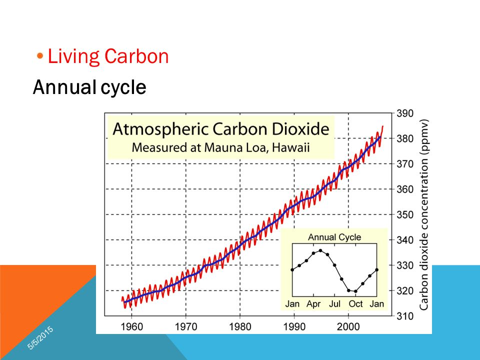 Living Carbon Annual cycle 5/5/2015