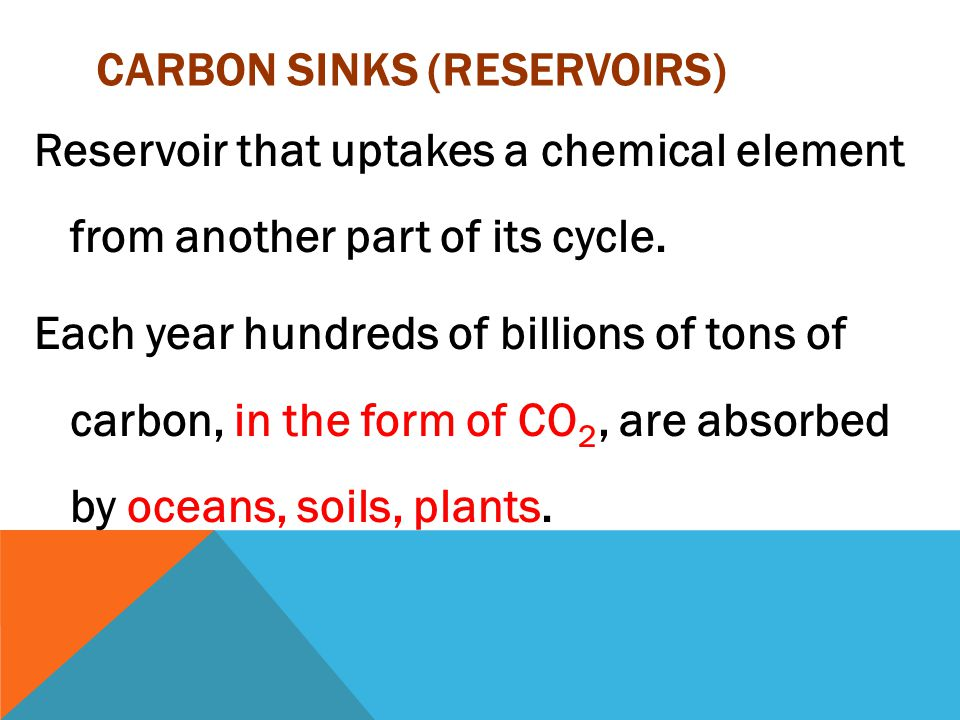 CARBON SINKS (RESERVOIRS) Reservoir that uptakes a chemical element from another part of its cycle.