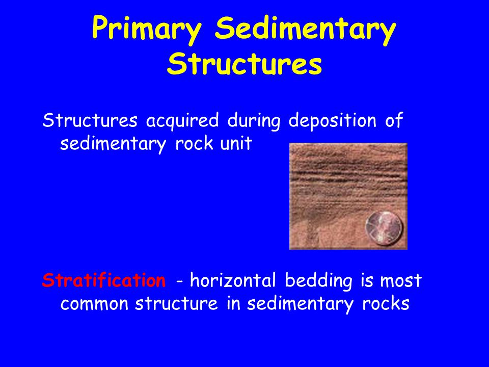 Primary Sedimentary Structures Structures acquired during deposition of sedimentary rock unit Stratification - horizontal bedding is most common structure in sedimentary rocks