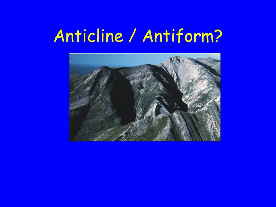 Anticline / Antiform?