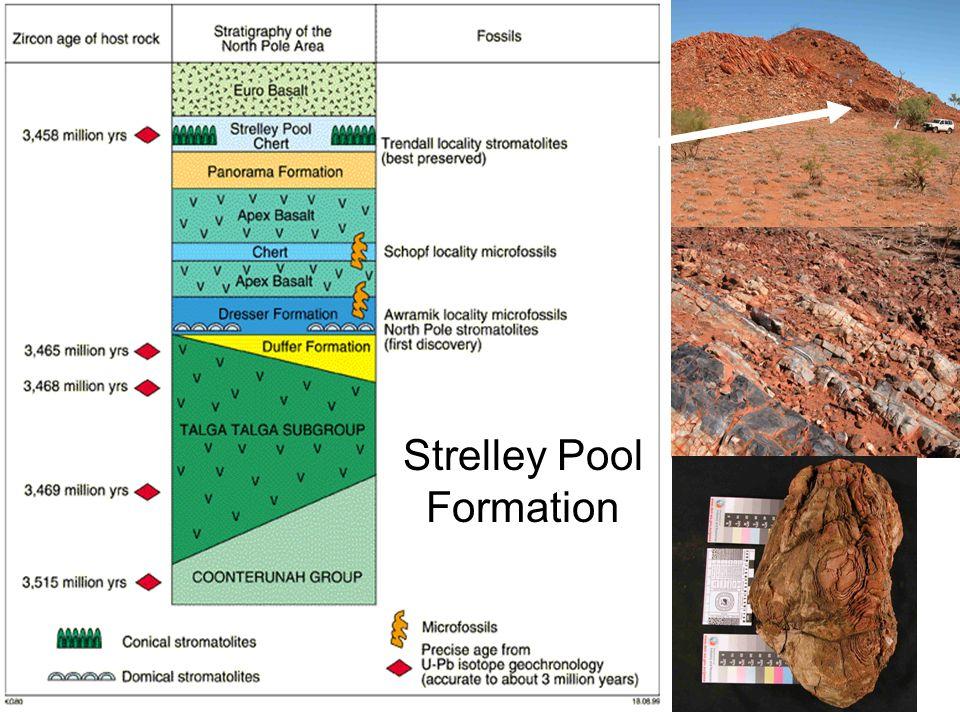 Strelley Pool Formation