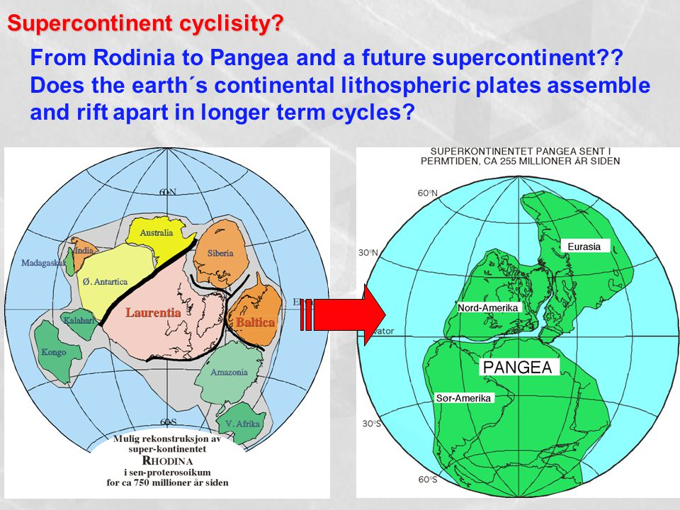 Supercontinent cyclisity. From Rodinia to Pangea and a future supercontinent .