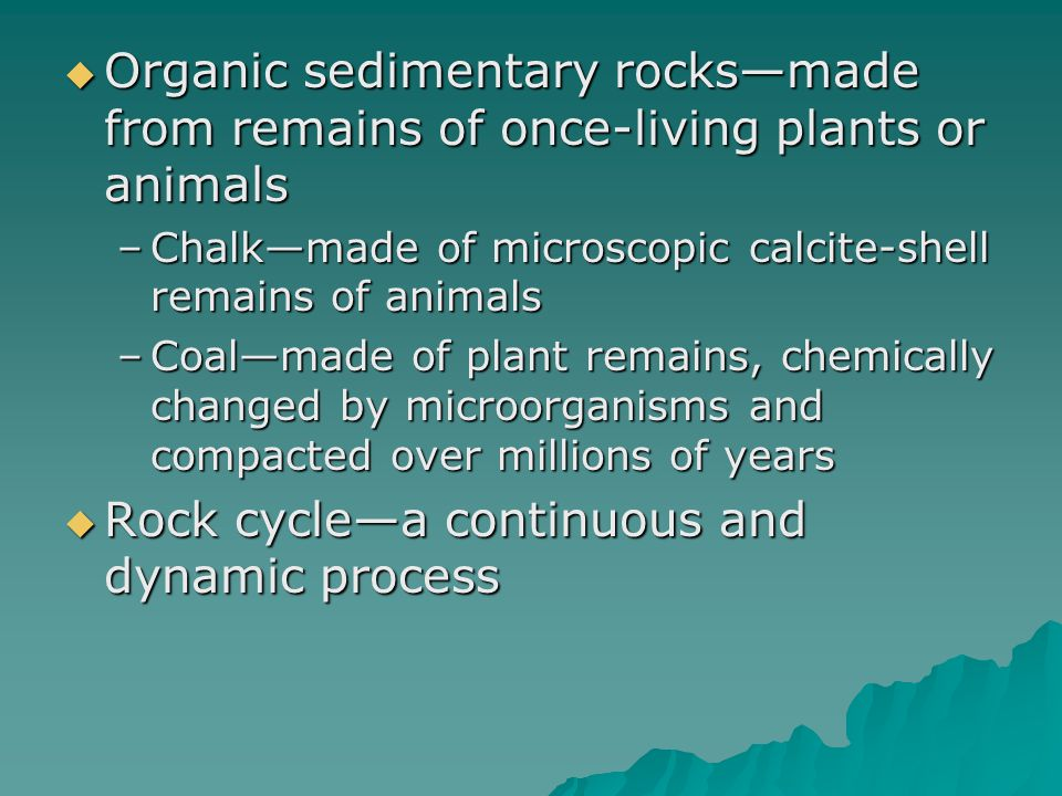  Organic sedimentary rocks—made from remains of once-living plants or animals –Chalk—made of microscopic calcite-shell remains of animals –Coal—made